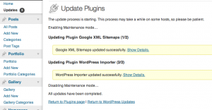 Wordpress Successful Updates